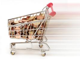 Nakupovalni voziček v spletni trgovini